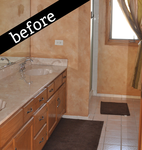 before photo of master bath