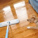 I'm a Foster Fail and found a great way to clean floors without harsh chemicals