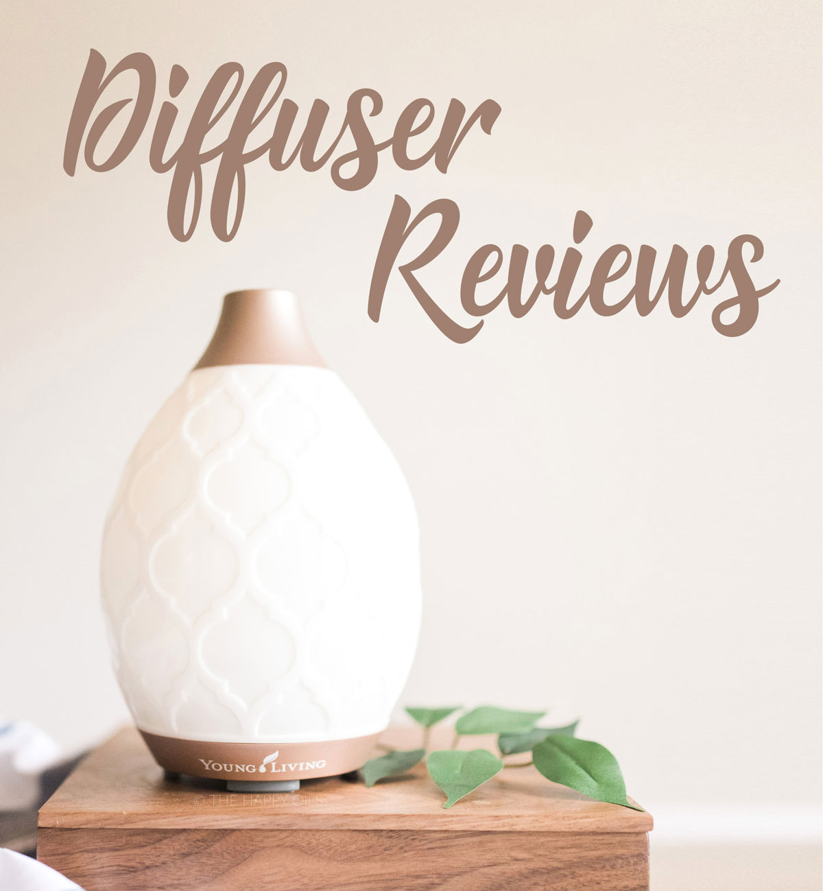Review of Essential Oil Diffusers - Plus diffuser seasonal